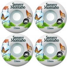 ROTI SML Delicate Series Sammy Montano OG Wide Wheels - 53 mm